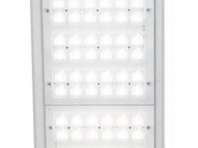 Светодиодный уличный светильник ДКУ 07-234-50-Д120